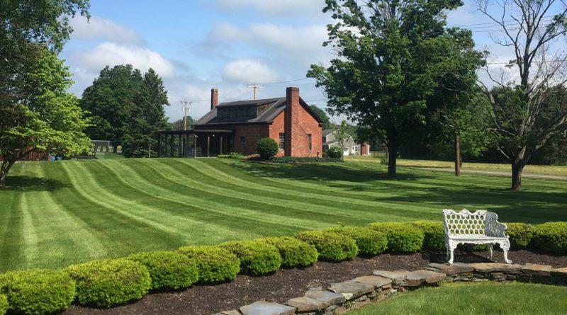 озеленяване на вашия двор