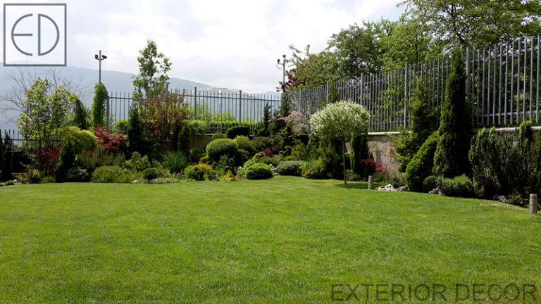Екстериорно озеленяване на двора ви