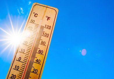 как да се предпазим от жегите